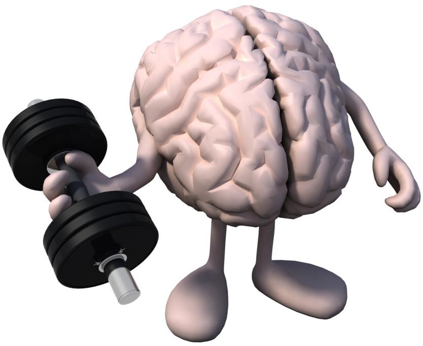 Zauberei trainiert das Gehirn